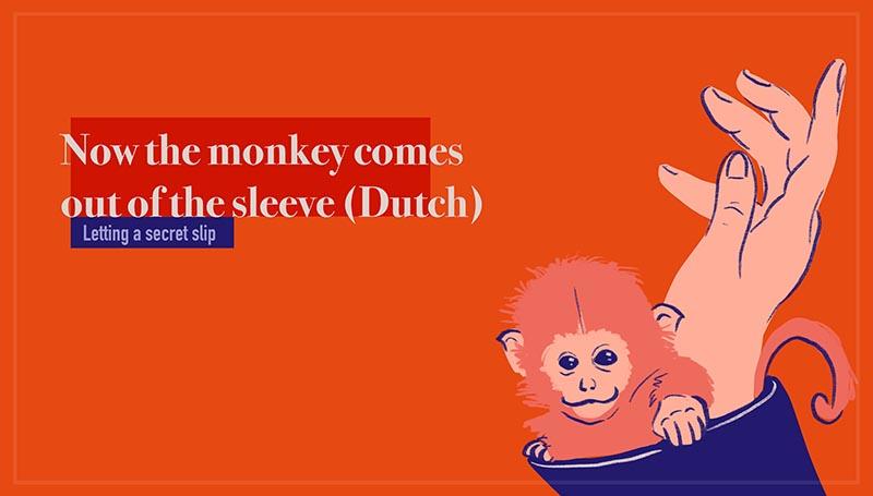 Now the monkey comes out of the sleeve - Nu komt de aap uit de mouw (Dutch)