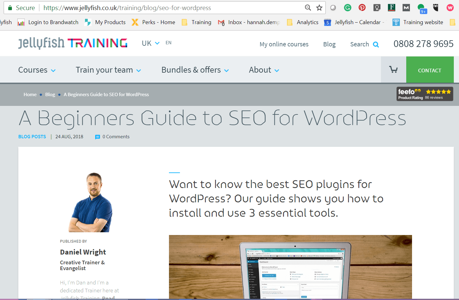 SEO for WordPress Jellyfish Training