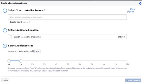 Screenshot of Facebook lookalike audiences