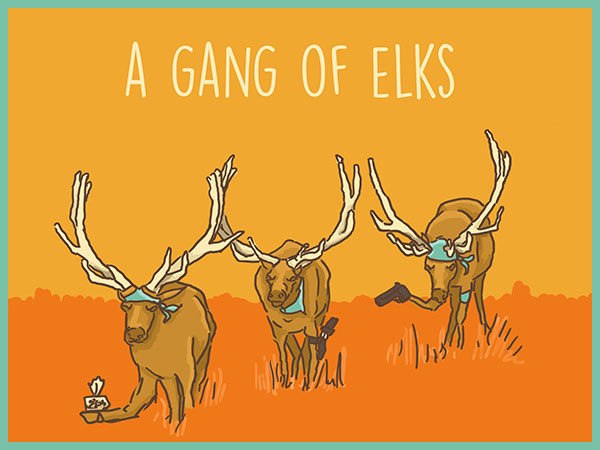 A gang of elks illustration