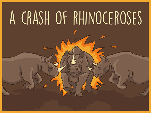 a crash of rhinos illustration
