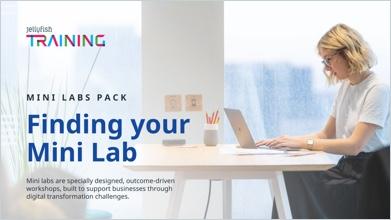 mini-labs-pack